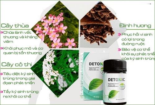 Chiết xuất từ thành phần tự nhiên giúp Detoxic - diệt ký sinh trùng đem lại hiệu quả nhanh mà vẫn đảm bảo an toàn