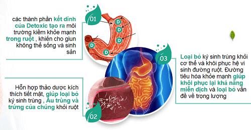 Cơ chế hoạt động của detoxic - diệt ký sinh trùng