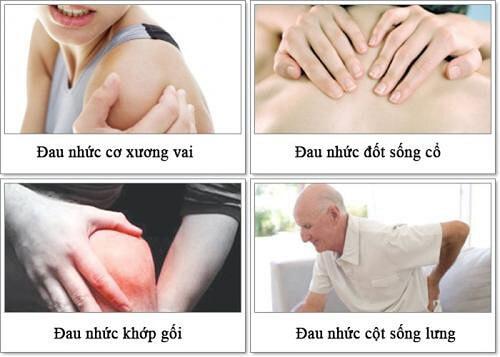 Bạn thường xuyên bị các cơn đau cơ, đau xương khớp hành hạ