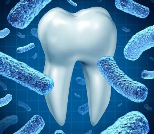 Nước súc miệng Propolinse ngay lập tức loại bỏ vi khuẩn gây mùi, đem lại cho khoang miệng mùi thơm mát